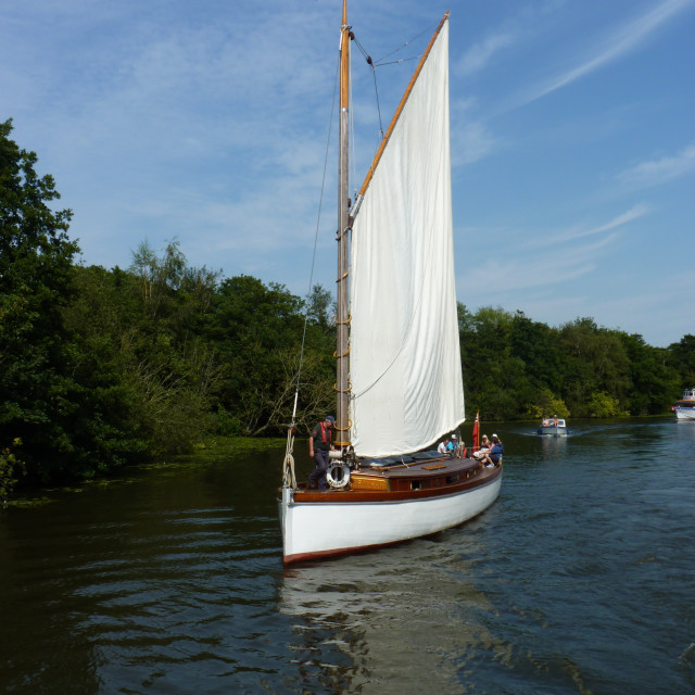"""A wherry"" stock image"
