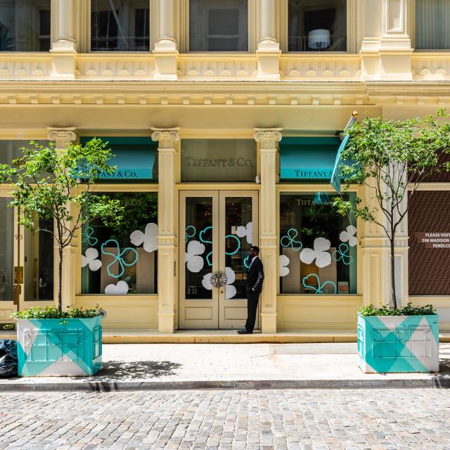 """Luxury jewelry storefront in Soho in New York"" stock image"