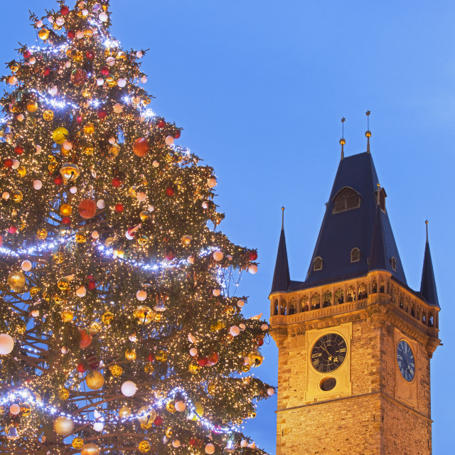 """Prague - Christmas Tree and Town Hall Tower at The Old Town Squa"" stock image"