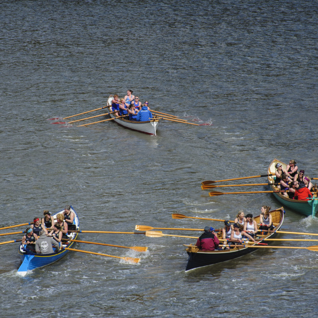 """Gig racing at Dartmouth Gig Regatta"" stock image"