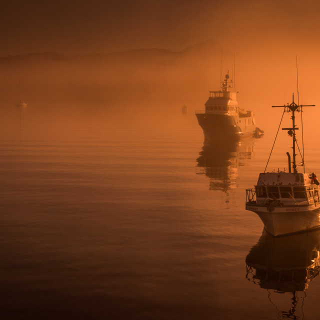 """""""Boats in the Harbor 2"""" stock image"""