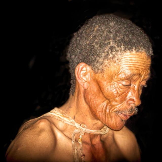 """""""San Bushman Elder"""" stock image"""