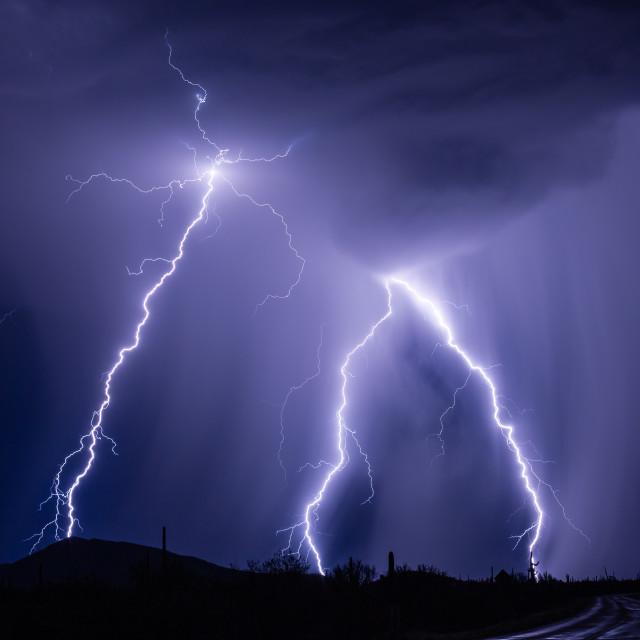 """Lightning bolts strike from a summer thunderstorm."" stock image"