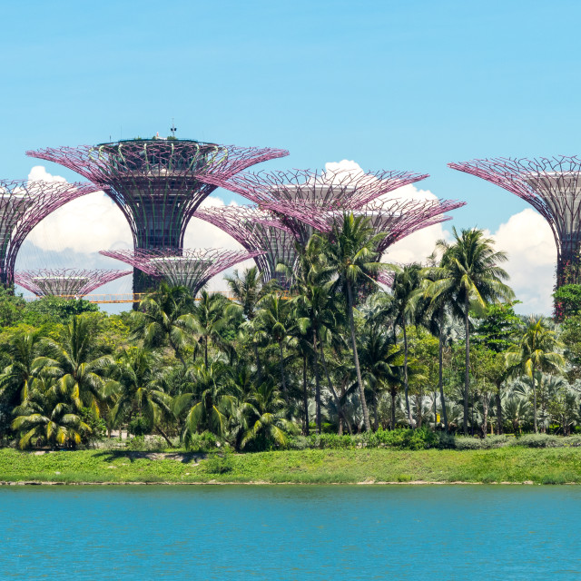"""""""Gardens by the bay, Singapore"""" stock image"""