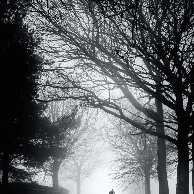 """Lone Runner on a Misty Morning"" stock image"