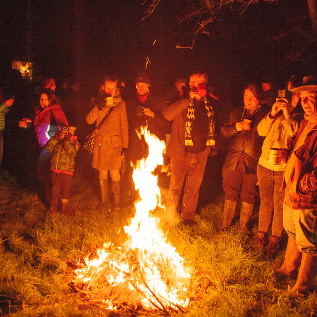"""DRinking Cider around a Bonfire at Whimple Wassail"" stock image"