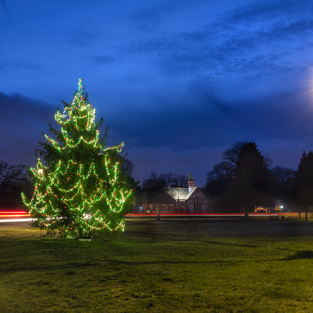 """""""Christmas tree on Rowlands Castle village green."""" stock image"""