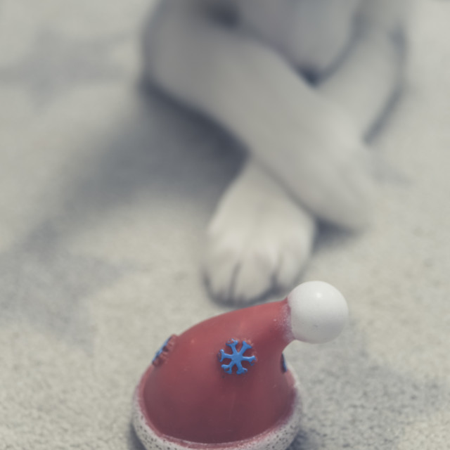 """""""Santa's hat"""" stock image"""
