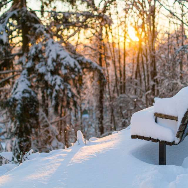 """Sun Rising over a Snow-covered Bench"" stock image"