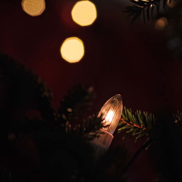 """""""Light In The Christmas Tree"""" stock image"""