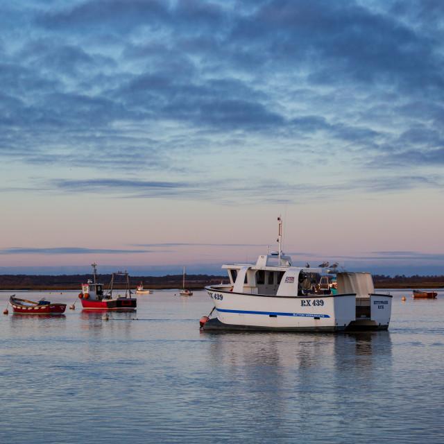 """Evening light, River Deben, Suffolk"" stock image"