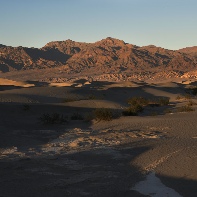 """Mesquite Flat Sand Dunes, Death Valley"" stock image"