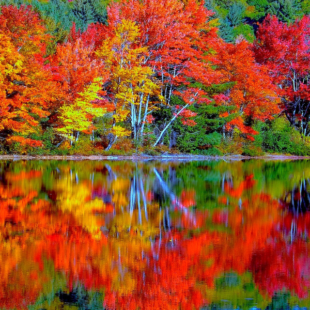 """Fall Foliage at Crystal Lake in Mirror Reflection"" stock image"