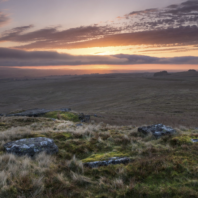 """Goldsborough Sunrise, Teesdale, County Durham, UK"" stock image"