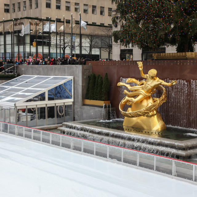 """""""Ice rink with Christmast tree"""" stock image"""