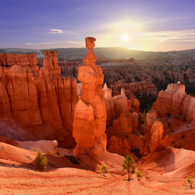 """""""Thor's hammer in Bryce Canyon National Park in Utah USA during sunrise."""" stock image"""