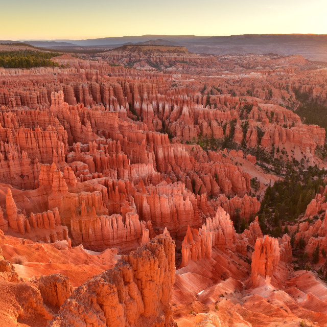"""""""Sunrise Point in Bryce Canyon National Park in Utah USA during sunrise."""" stock image"""