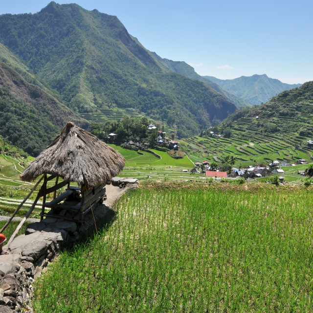 """A small town in Batad Rice terraces in the Philippines."" stock image"