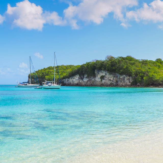 """""""Yachts moored in Marie Galante tropical bay"""" stock image"""