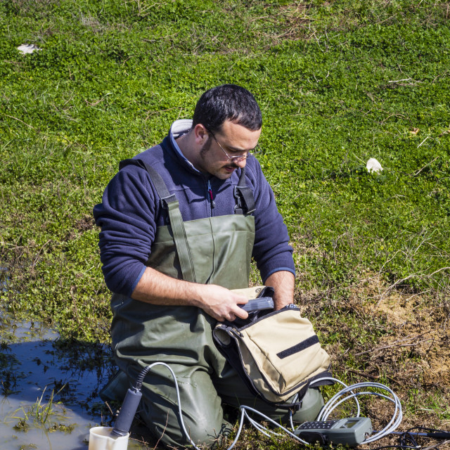 """""""Scientist measuring environmental water quality in a wetland"""" stock image"""