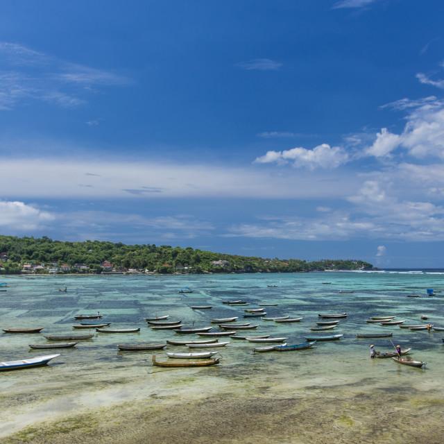"""Seaweed farming at Nusa Lembongan, Bali"" stock image"
