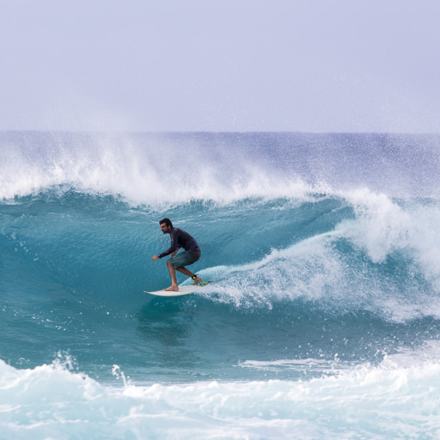 """""""Surfing the raging waves of Banzai Pipeline"""" stock image"""