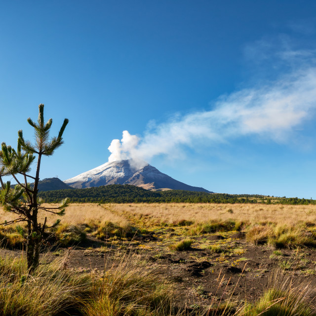 """Smoke comes out of Popocatepetl Volcano, Mexico"" stock image"