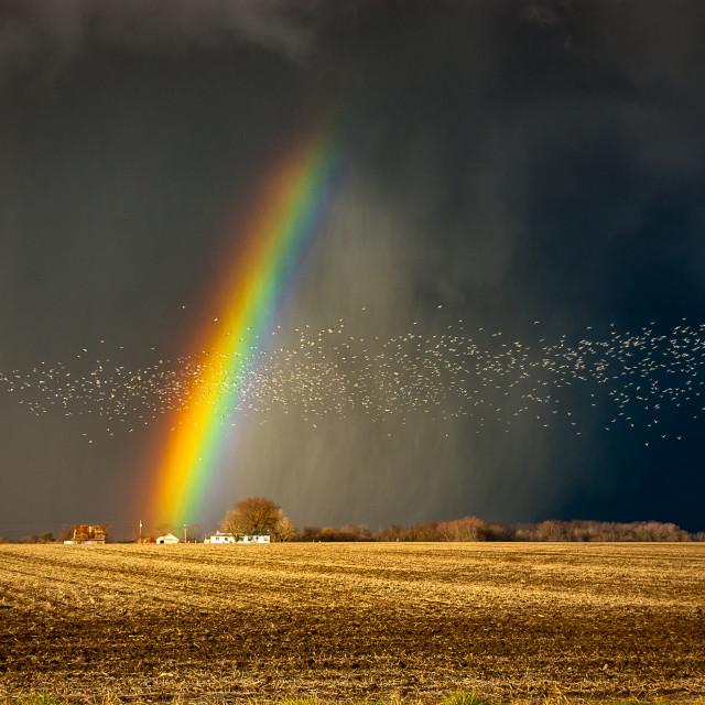 """Stormy Rainbow"" stock image"