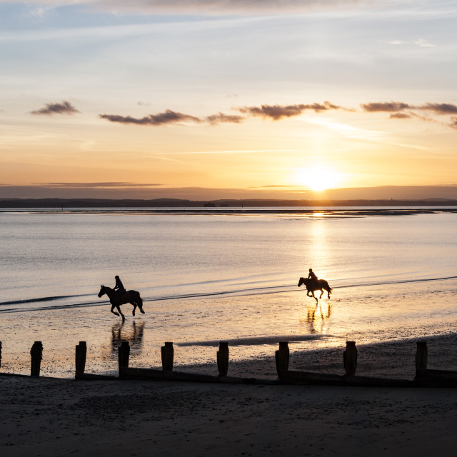 """""""Horse-riders on beach at sunset"""" stock image"""