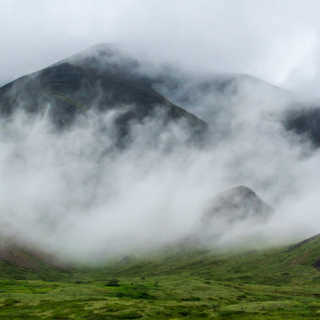 """Foggy ridge in Denali"" stock image"