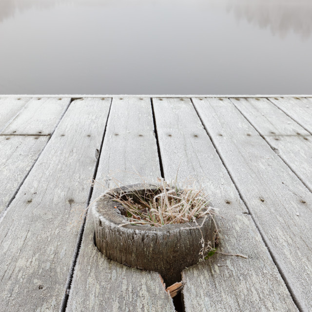 """Frosty wooden pier"" stock image"
