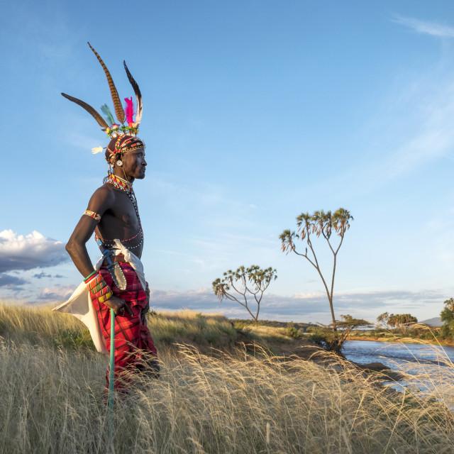 """Portrait Samburu tribal member, Ewasi Ngiro River, traditional clothing, Kenya"" stock image"