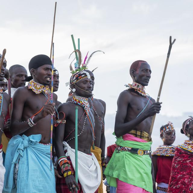 """Portrait Samburu tribe members dancing the traditional wedding dance at dusk,..."" stock image"