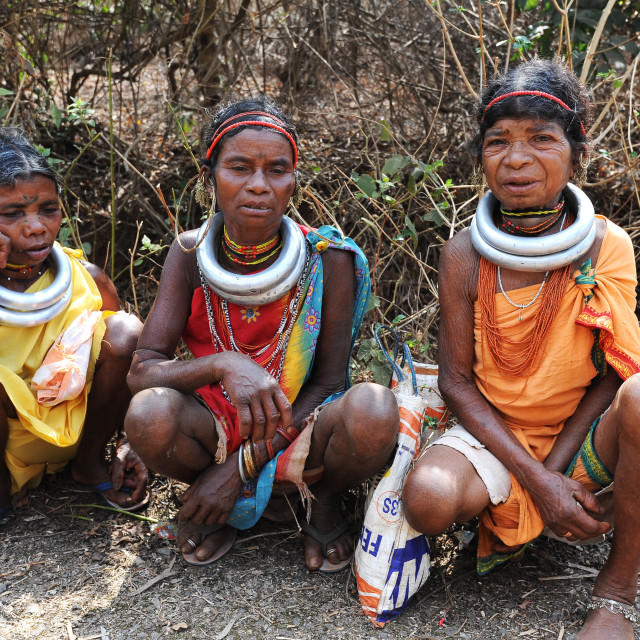 """""""Godaba tribeswomen with traditional steel necklaces on their way home from..."""" stock image"""