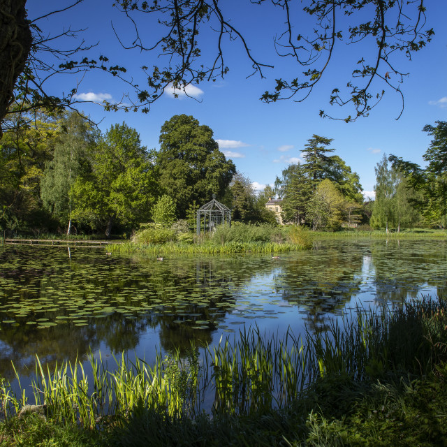 """Glan Severn gardens"" stock image"