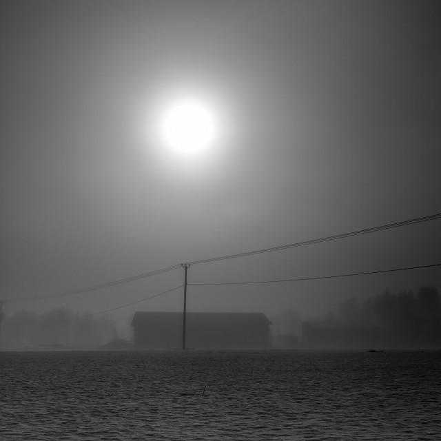 """Sunlight Through The Mist"" stock image"