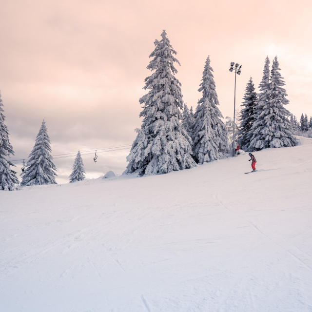 """""""Skier in a sunset setting."""" stock image"""