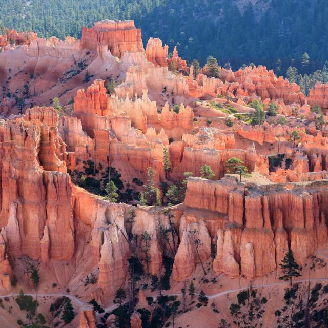"""Bryce Canyon National Park, Utah, USA"" stock image"