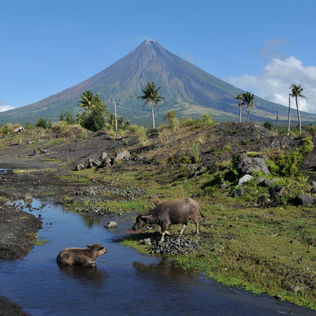 """Mayon Volcano, Albay, Philippines"" stock image"