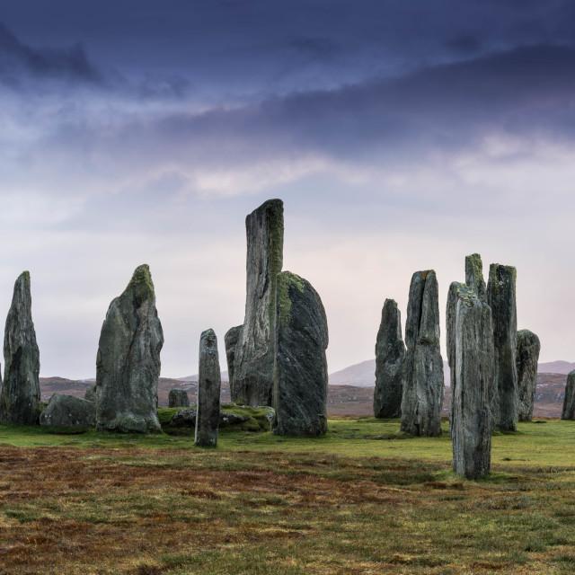 """Callinish standing stones"" stock image"