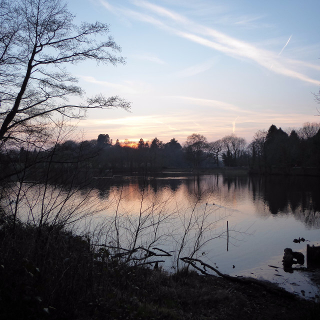 """Sunset on Gnoll Pond"" stock image"