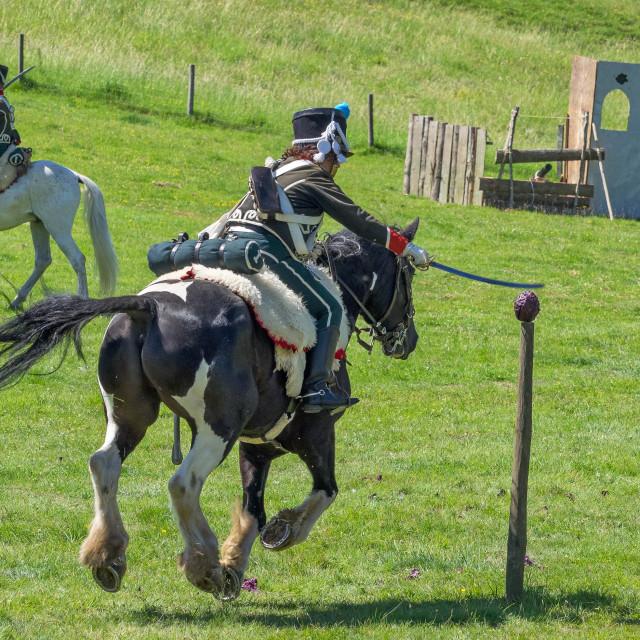 """""""Napoleonic cavalry"""" stock image"""