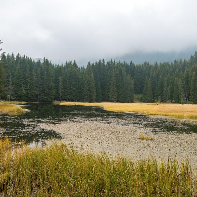 """Smolyan lakes in Bulgaria."" stock image"