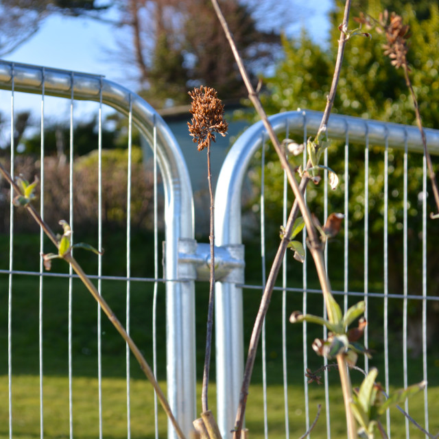 """Metal Construction Fence and Nature"" stock image"