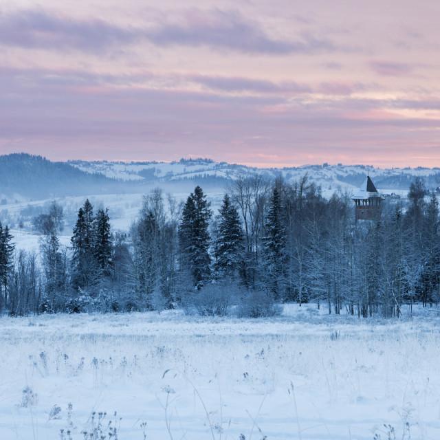 """""""Winter panorama of Zakopane"""" stock image"""
