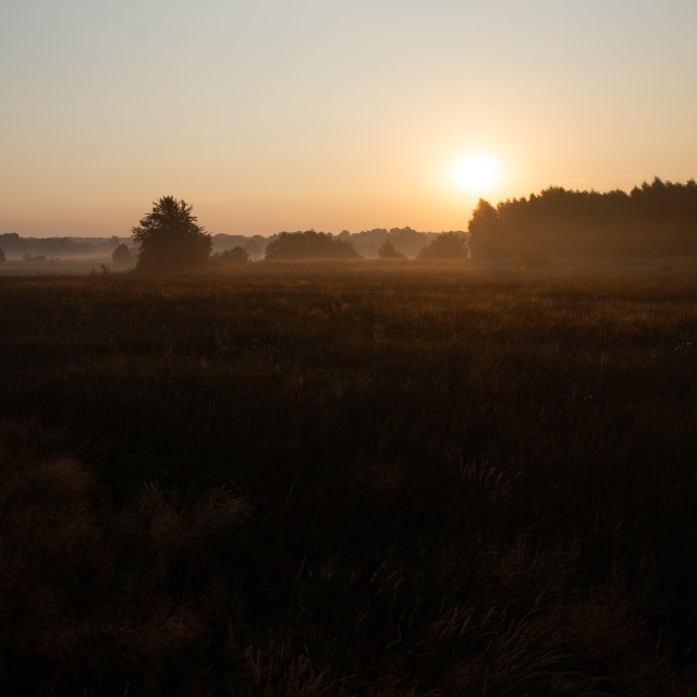 """""""morning on meadow. sunrise landscape photo with vintage effect"""" stock image"""