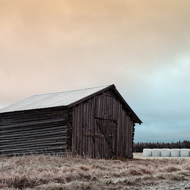 """""""Old Barn On The Frosty Fields With White Bales"""" stock image"""