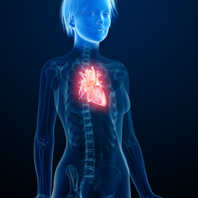 """""""Illustration of an inflamed heart"""" stock image"""