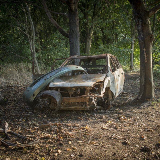 """Burnt-out car in woodland"" stock image"