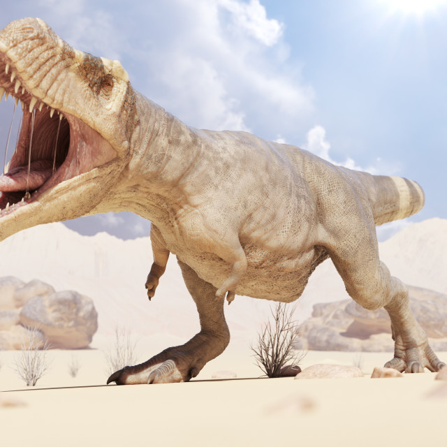 """""""Illustration of a T-rex"""" stock image"""